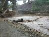 נחל הקיבוצים בגשם