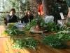 """סדנת בישול צמחי-בר, ב""""הר יללת התנים"""", על הכרמל"""