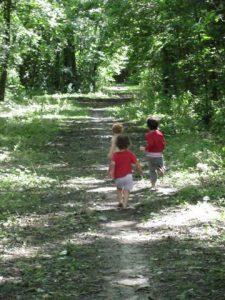 ילדות מטיילות ביער הולנדי