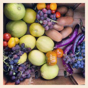 ירקות פירות
